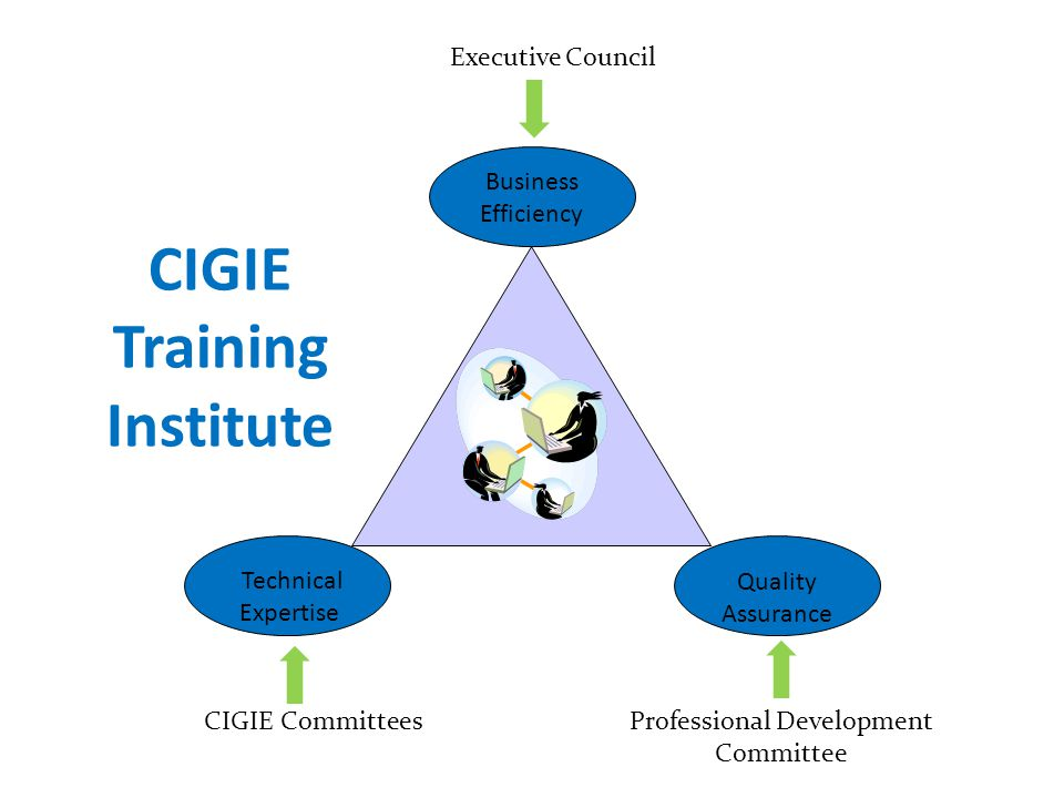 CIGIE Training Institute Business Efficiency Quality Assurance Technical Expertise Executive Council Professional Development Committee CIGIE Committe
