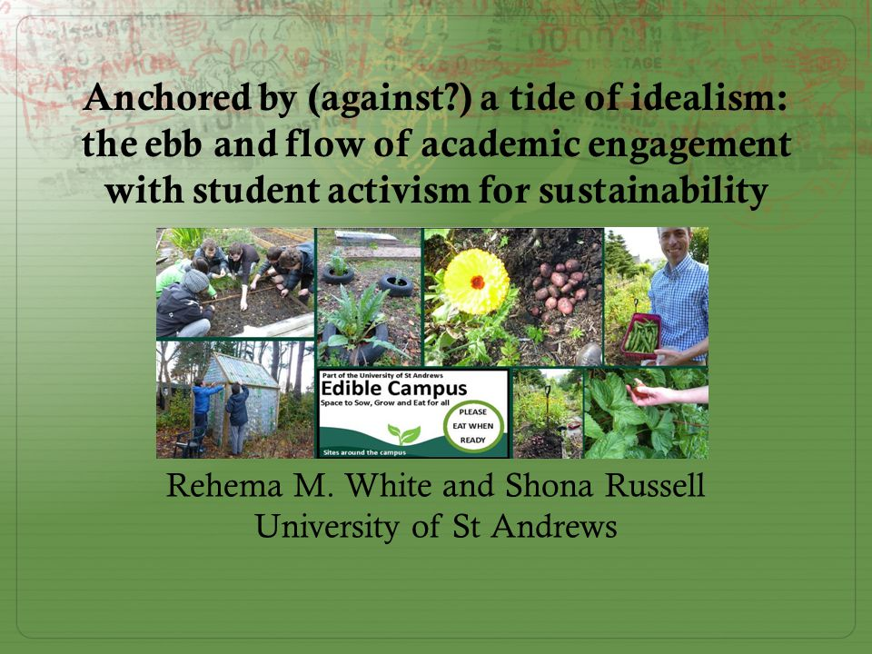 Sustainability action and academics as activists Academic staff  For staff sustainability action means 'thinking and writing'  Staff often focused on (internal) policy change  Activism and even action perceived to impede careers in western institutions  Staff constrained by publication in excellent journals; monodisciplinarity; promotion procedures Students  For students sustainability action means 'practical projects'  Students offer a sense of pragmatism; sense of humour  Students less constrained by career moves.