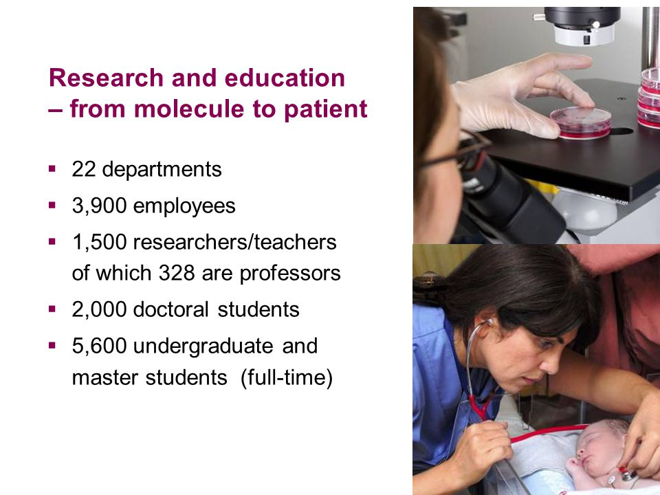 Research and education – from molecule to patient  22 departments  3,900 employees  1,500 researchers/teachers of which 328 are professors  2,000 doctoral students  5,600 undergraduate and master students (full-time)