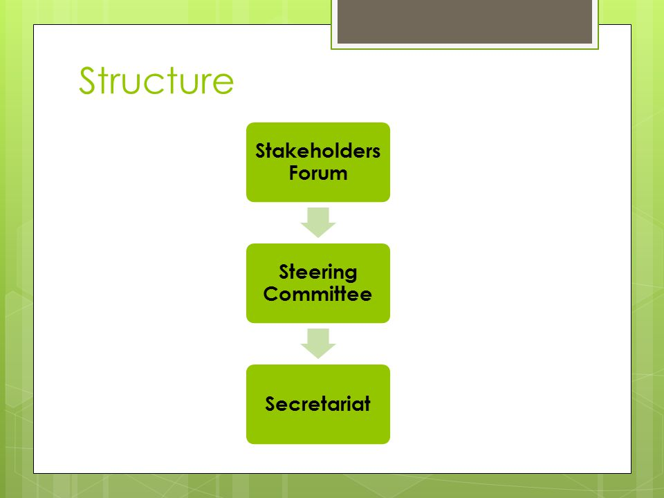 Structure Stakeholders Forum Steering Committee Secretariat