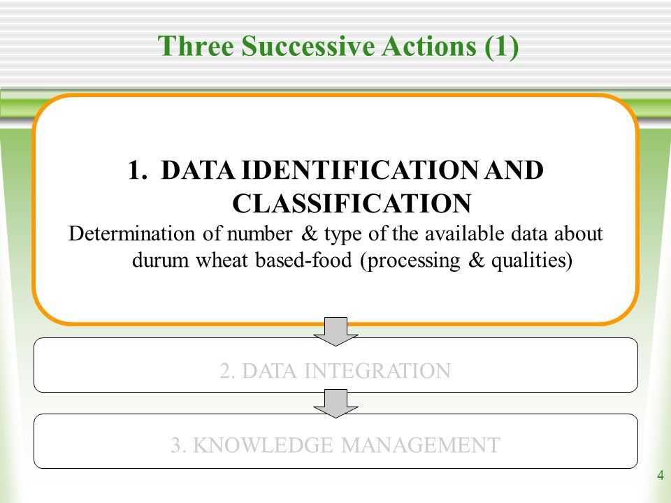 4 Three Successive Actions (1) 1.DATA IDENTIFICATION AND CLASSIFICATION Determination of number & type of the available data about durum wheat based-food (processing & qualities) 2.