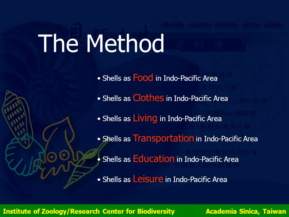 The Method Shells as Food in Indo-Pacific Area Shells as Clothes in Indo-Pacific Area Shells as Living in Indo-Pacific Area Shells as Transportation in Indo-Pacific Area Shells as Education in Indo-Pacific Area Shells as Leisure in Indo-Pacific Area Institute of Zoology/Research Center for Biodiversity Academia Sinica, Taiwan