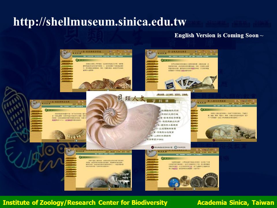 http://shellmuseum.sinica.edu.tw English Version is Coming Soon ~ Institute of Zoology/Research Center for Biodiversity Academia Sinica, Taiwan