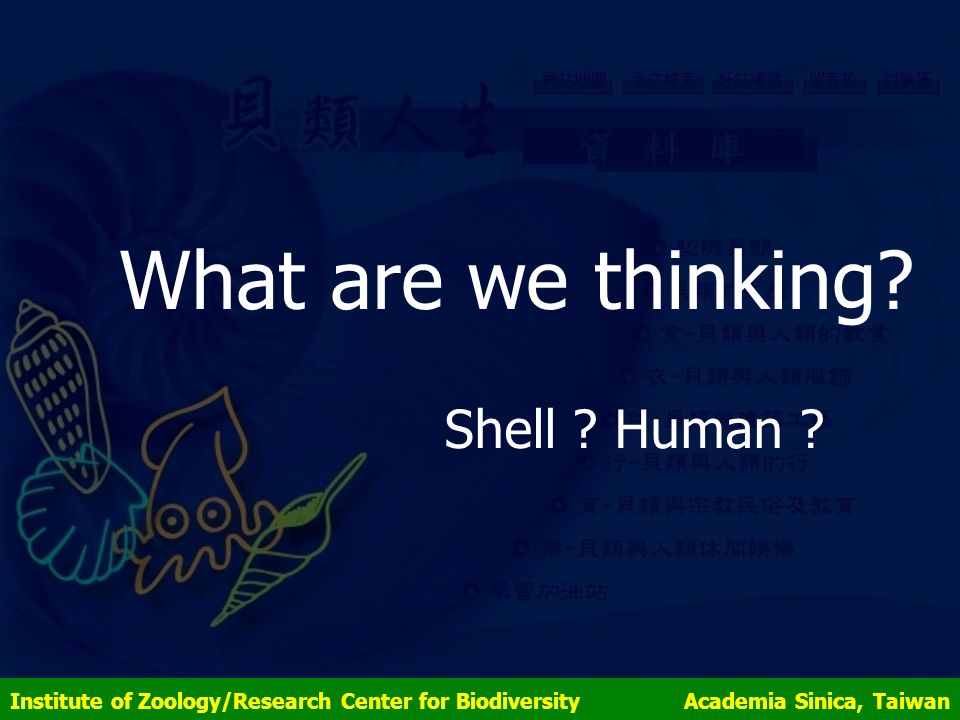What are we thinking. Shell . Human .