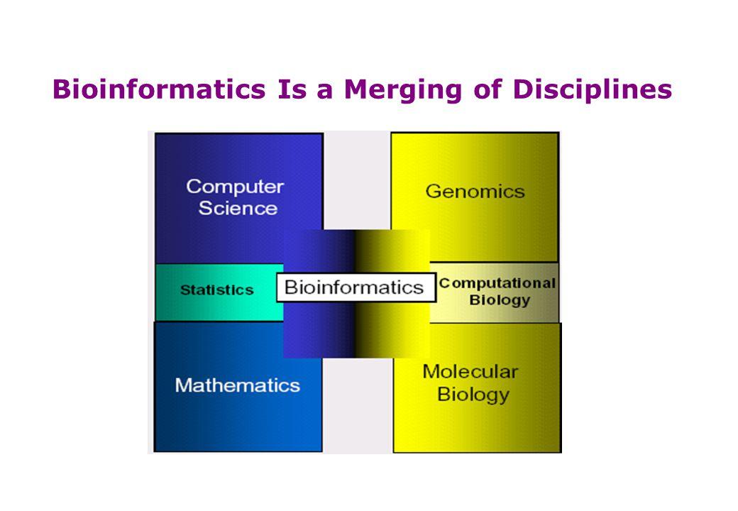 Bioinformatics Is a Merging of Disciplines