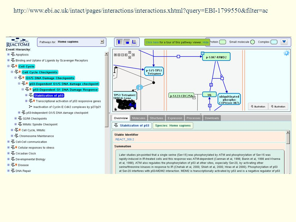 http://www.ebi.ac.uk/intact/pages/interactions/interactions.xhtml query=EBI-1799550&filter=ac