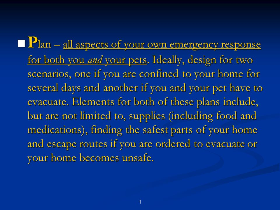 1 P lan – all aspects of your own emergency response for both you and your pets.
