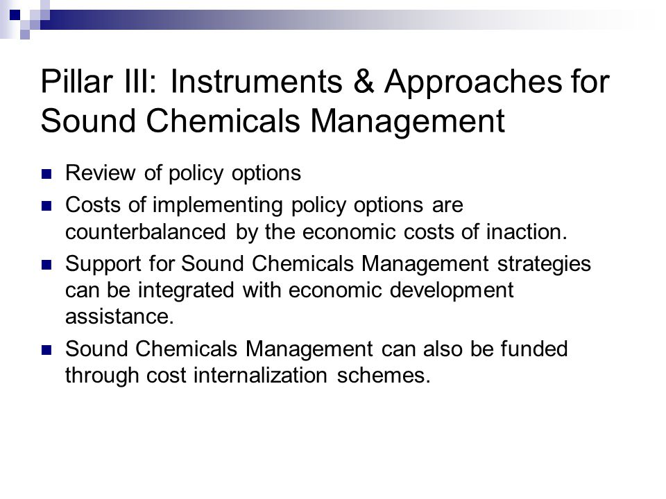 Pillar III: Instruments & Approaches for Sound Chemicals Management Review of policy options Costs of implementing policy options are counterbalanced by the economic costs of inaction.