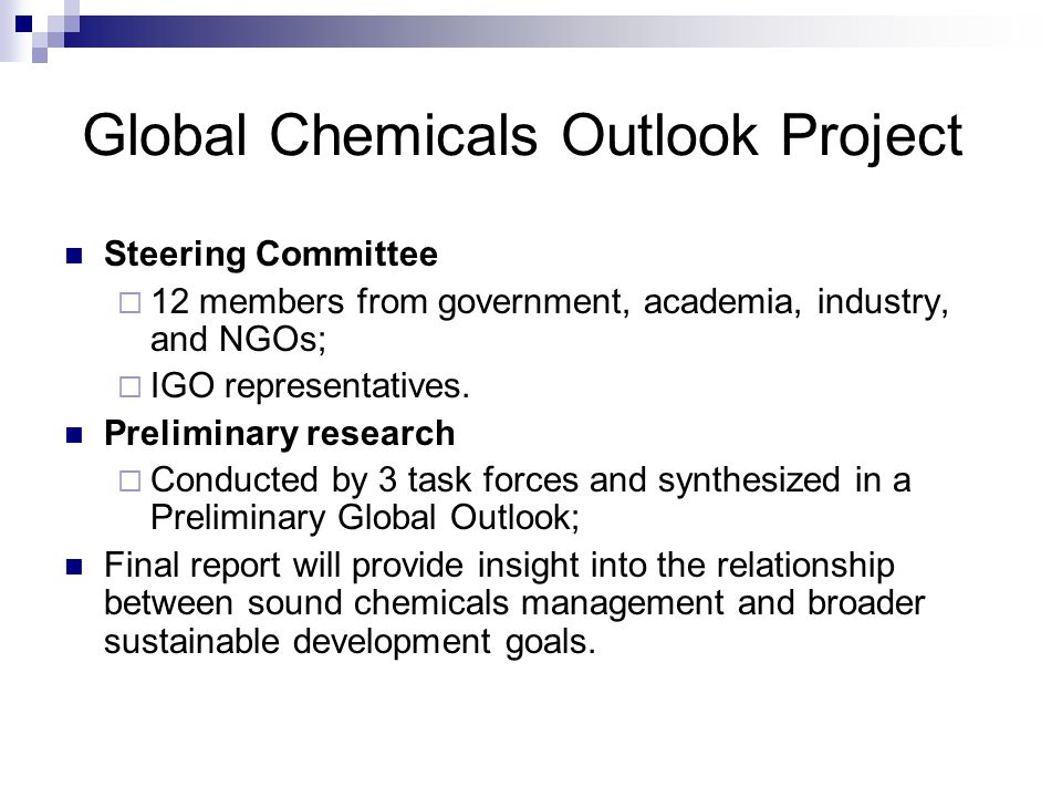 Global Chemicals Outlook Project Steering Committee  12 members from government, academia, industry, and NGOs;  IGO representatives. Preliminary res