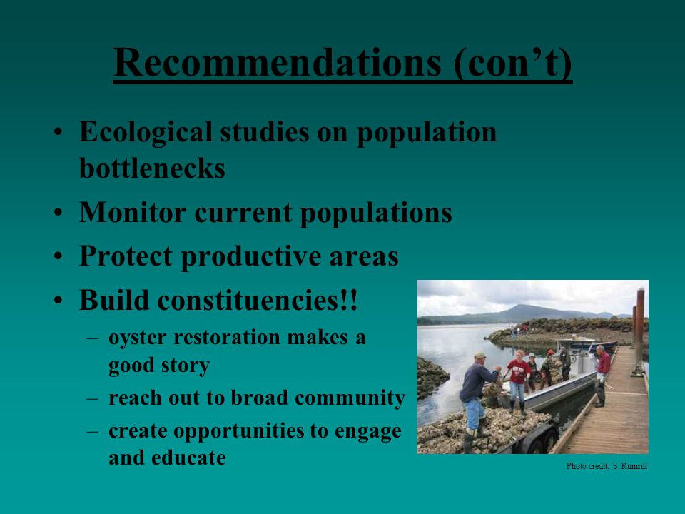 Recommendations (con't) Ecological studies on population bottlenecks Monitor current populations Protect productive areas Build constituencies!! –oyst