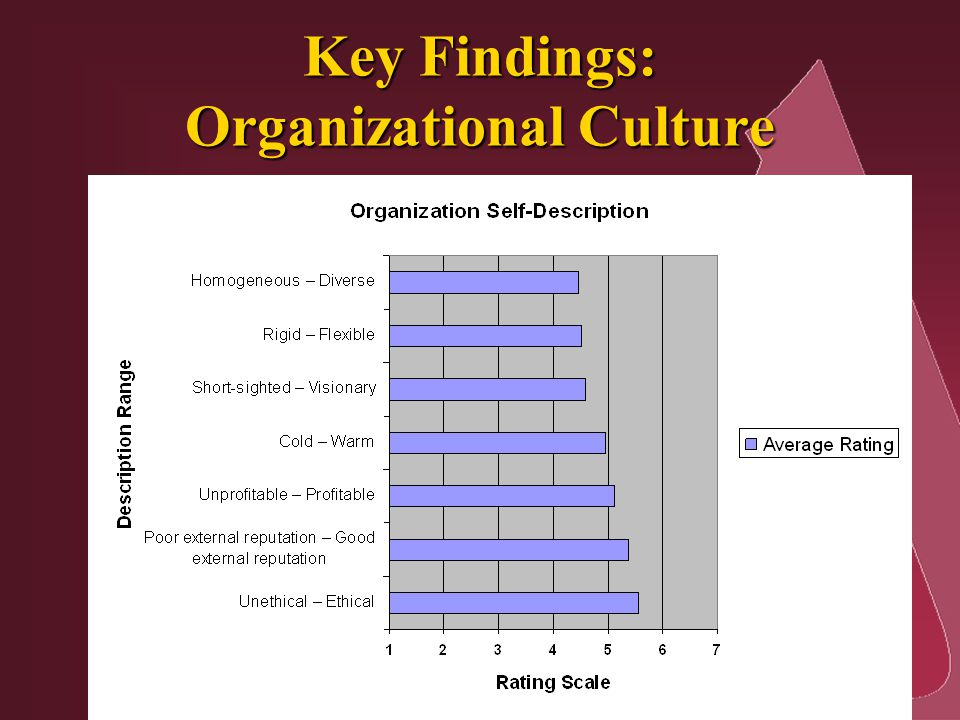Key Findings: Organizational Culture