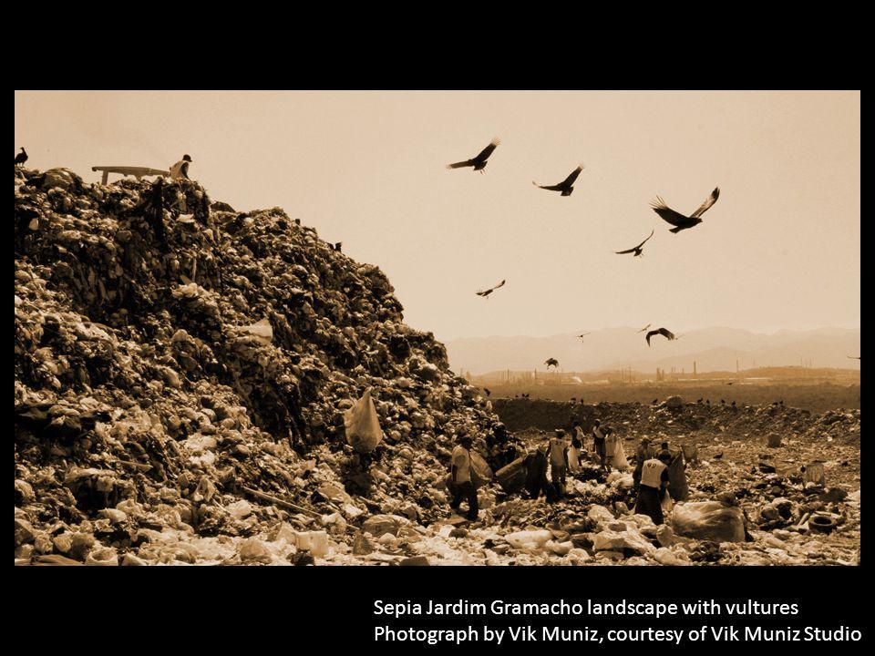 Sepia Jardim Gramacho landscape with vultures Photograph by Vik Muniz, courtesy of Vik Muniz Studio