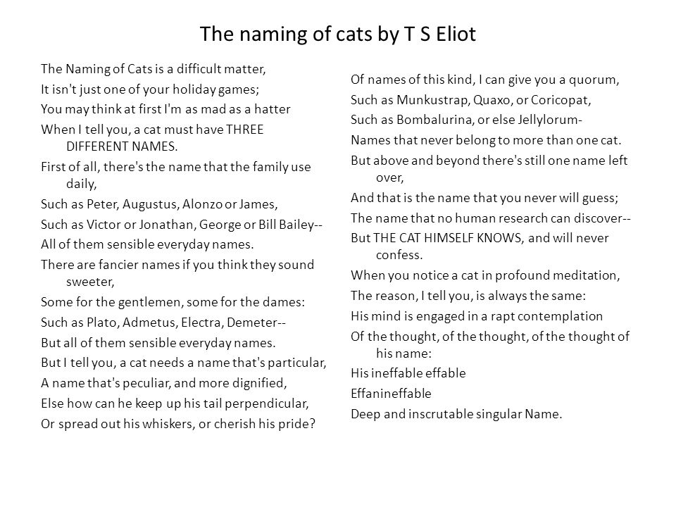 The naming of cats by T S Eliot The Naming of Cats is a difficult matter, It isn t just one of your holiday games; You may think at first I m as mad as a hatter When I tell you, a cat must have THREE DIFFERENT NAMES.