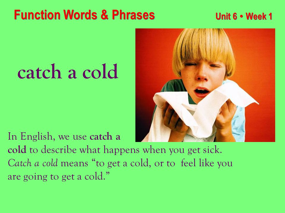 Unit 6 ● Week 1 catch a cold Function Words & Phrases In English, we use catch a cold to describe what happens when you get sick.