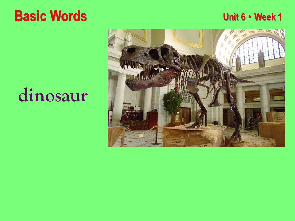 Unit 6 ● Week 1 dinosaur Basic Words
