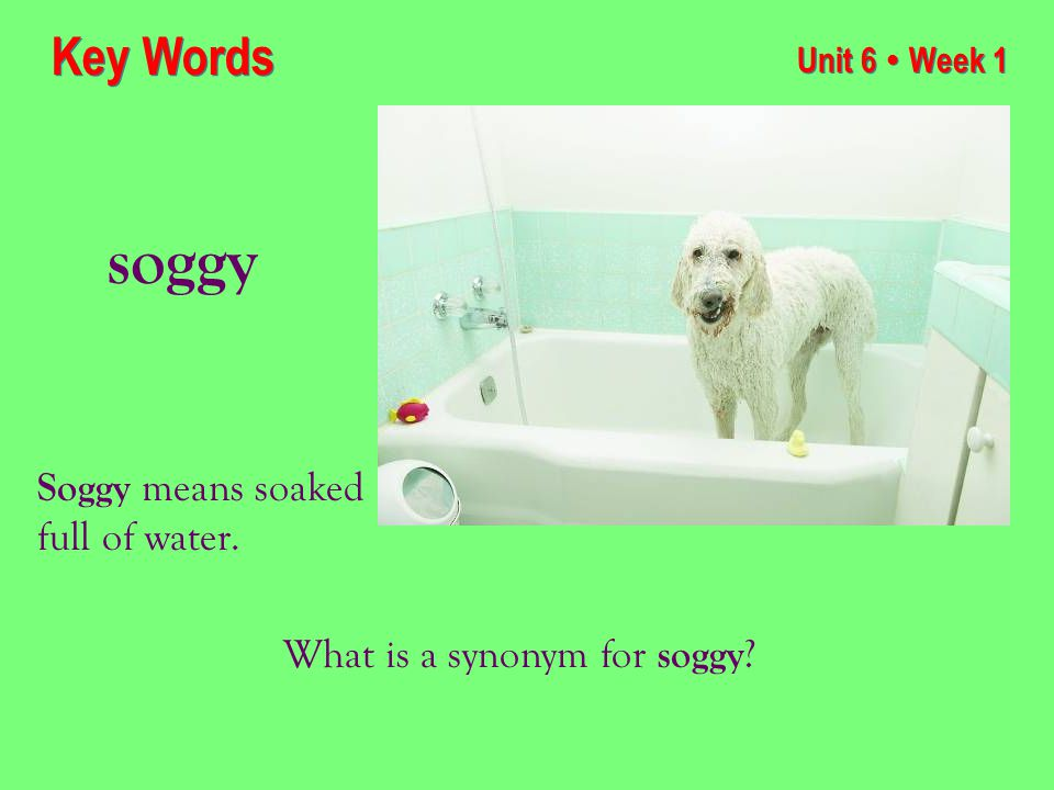 Unit 6 ● Week 1 soggy Key Words Soggy means soaked full of water. What is a synonym for soggy