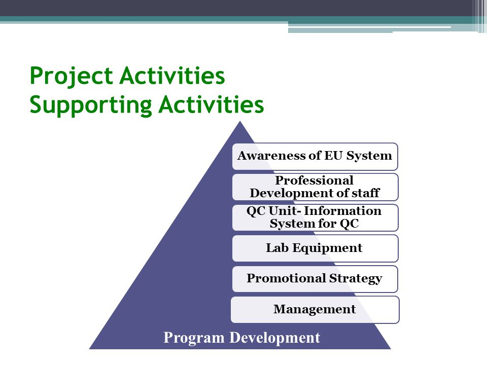 Project Activities Supporting Activities Awareness of EU System Professional Development of staff QC Unit- Information System for QC Lab EquipmentPromotional StrategyManagement Program Development