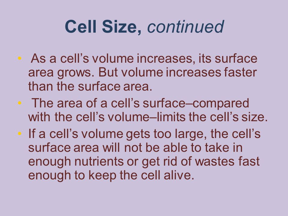 Cell Size, continued As a cell's volume increases, its surface area grows. But volume increases faster than the surface area. The area of a cell's sur