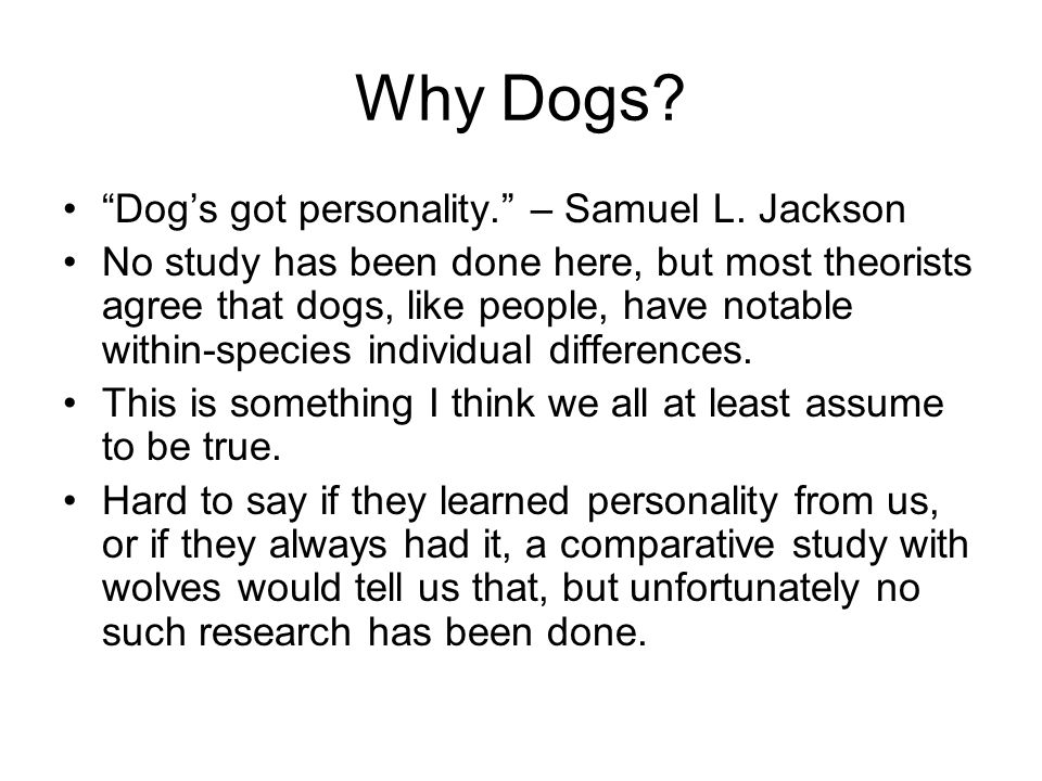 Why Dogs. Dog's got personality. – Samuel L.