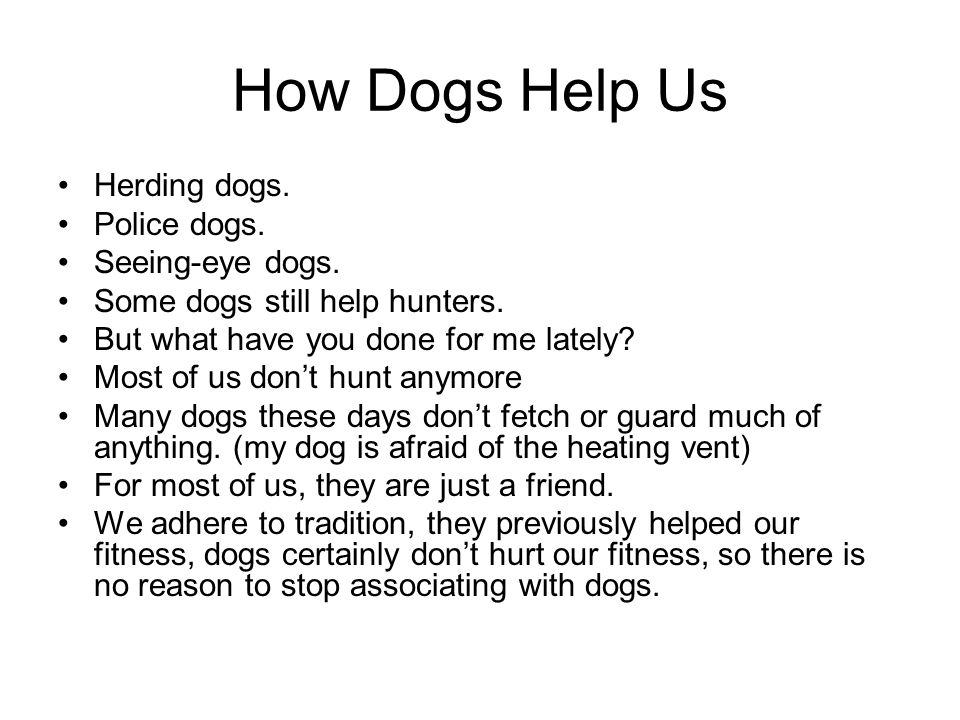How Dogs Help Us Herding dogs. Police dogs. Seeing-eye dogs.