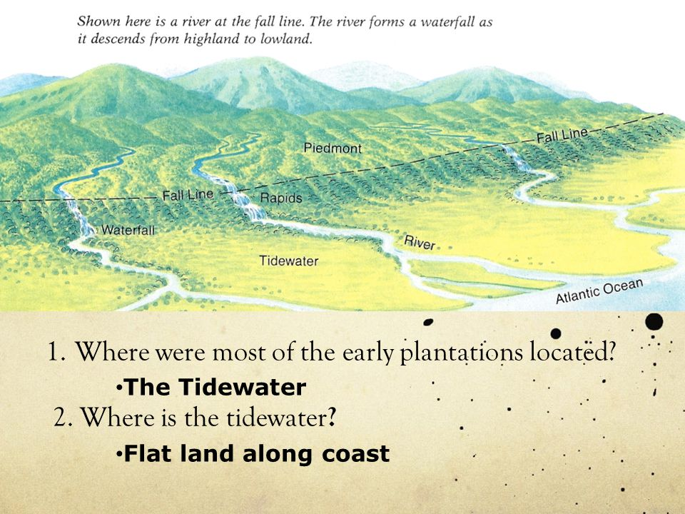 1.Where were most of the early plantations located.