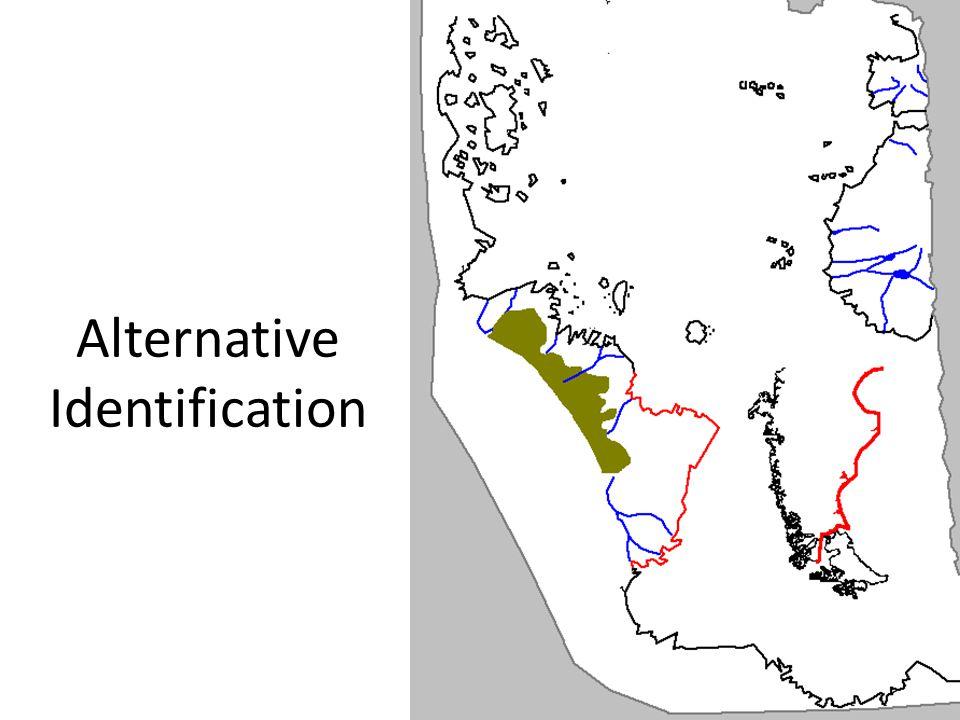 Alternative Identification