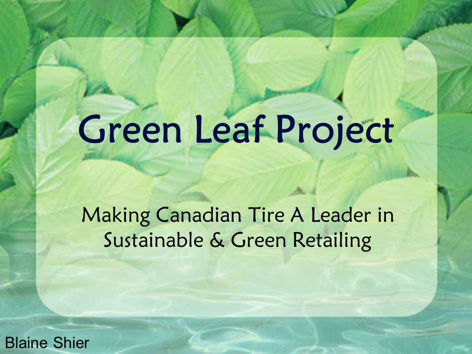 Programs Green Leaf Website (employee version) A web-site designed to educate employees on products and hints and tips for the consumer Also provides education for use in their own home and day to day life Environmental Audits Optional program offered to dealers to evaluate ways in which their store can reduce their environmental footprint