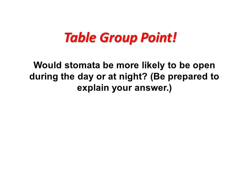 Table Group Point! Would stomata be more likely to be open during the day or at night? (Be prepared to explain your answer.)