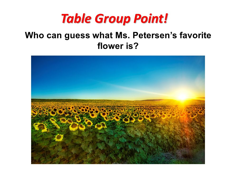 Table Group Point! Who can guess what Ms. Petersen's favorite flower is