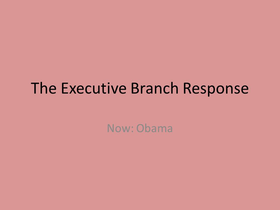 The Executive Branch Response Now: Obama