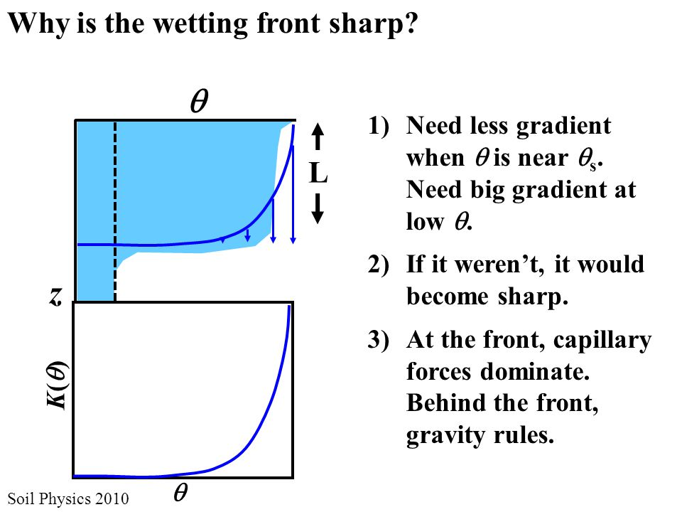 ii Soil Physics 2010 Why is the wetting front sharp.