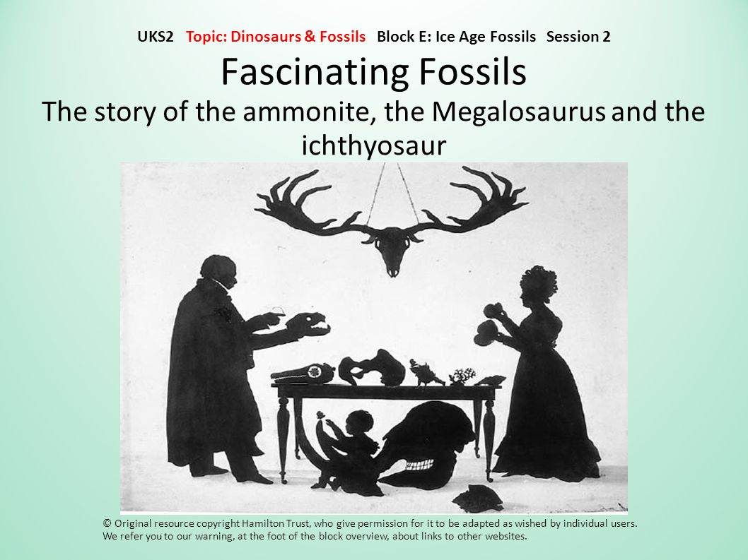 Fascinating Fossils The story of the ammonite, the Megalosaurus and the ichthyosaur © Original resource copyright Hamilton Trust, who give permission for it to be adapted as wished by individual users.