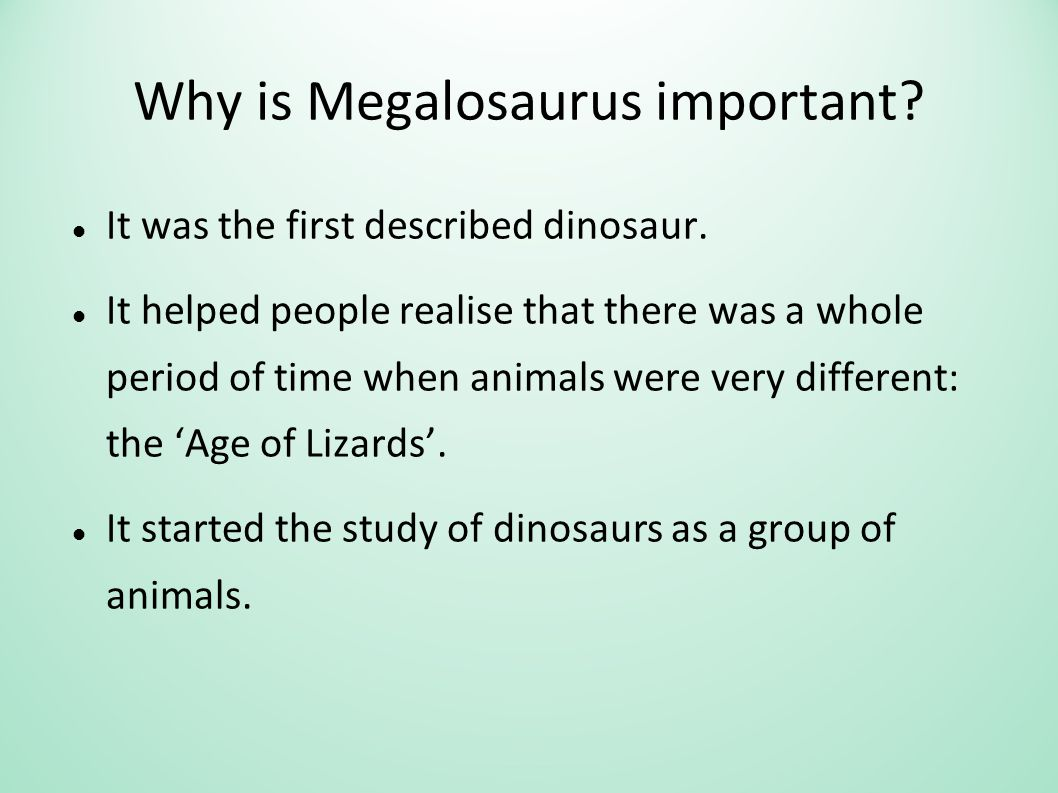 Why is Megalosaurus important. It was the first described dinosaur.