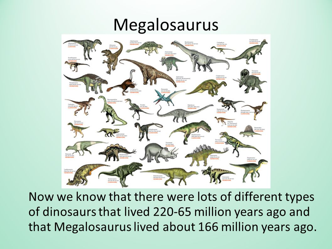 Megalosaurus Now we know that there were lots of different types of dinosaurs that lived 220-65 million years ago and that Megalosaurus lived about 166 million years ago.