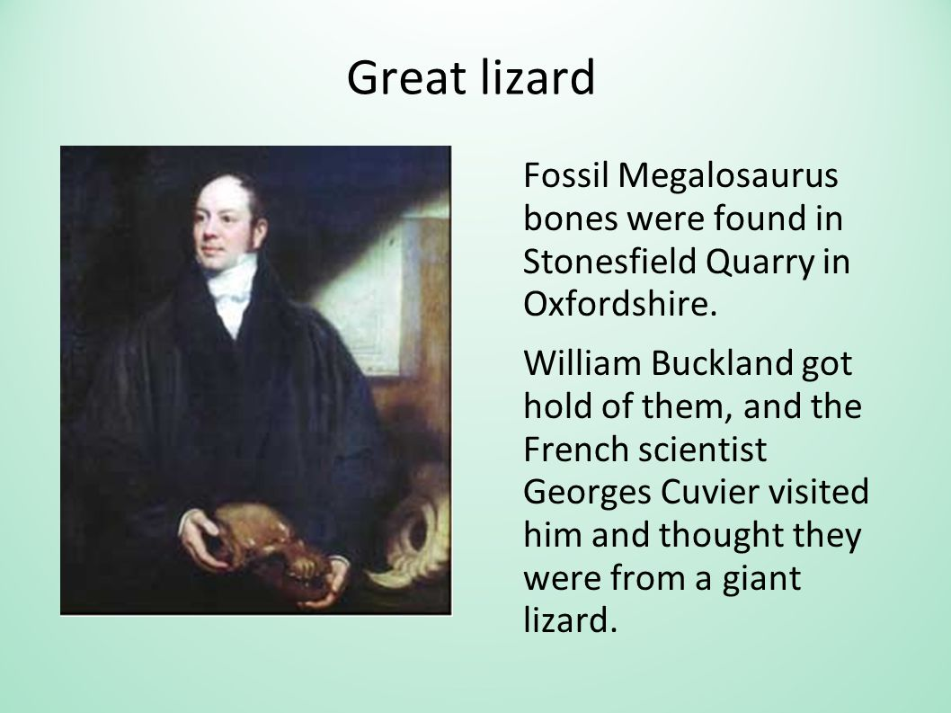 Great lizard Fossil Megalosaurus bones were found in Stonesfield Quarry in Oxfordshire. William Buckland got hold of them, and the French scientist Ge