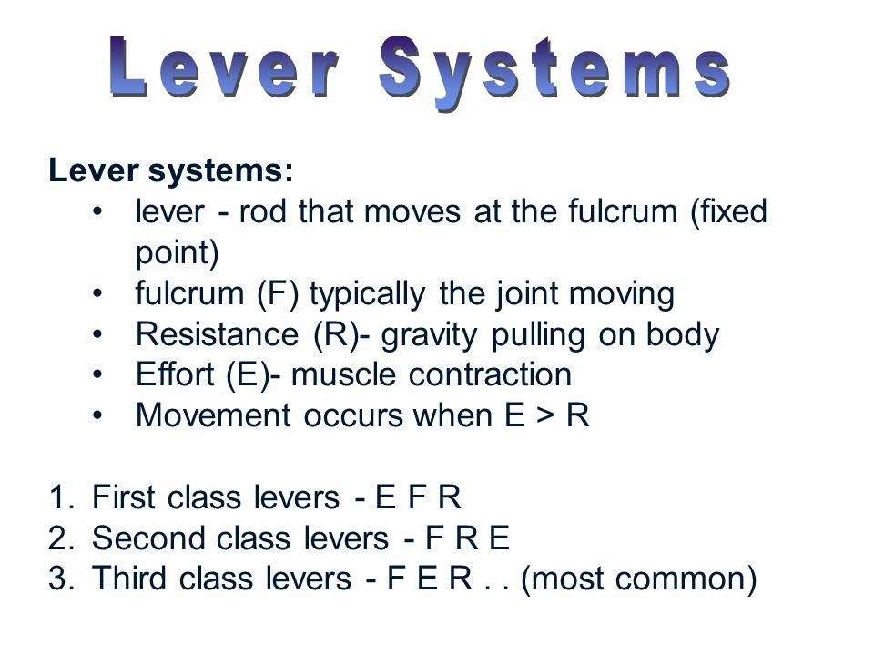 Lever systems: lever - rod that moves at the fulcrum (fixed point) fulcrum (F) typically the joint moving Resistance (R)- gravity pulling on body Effo