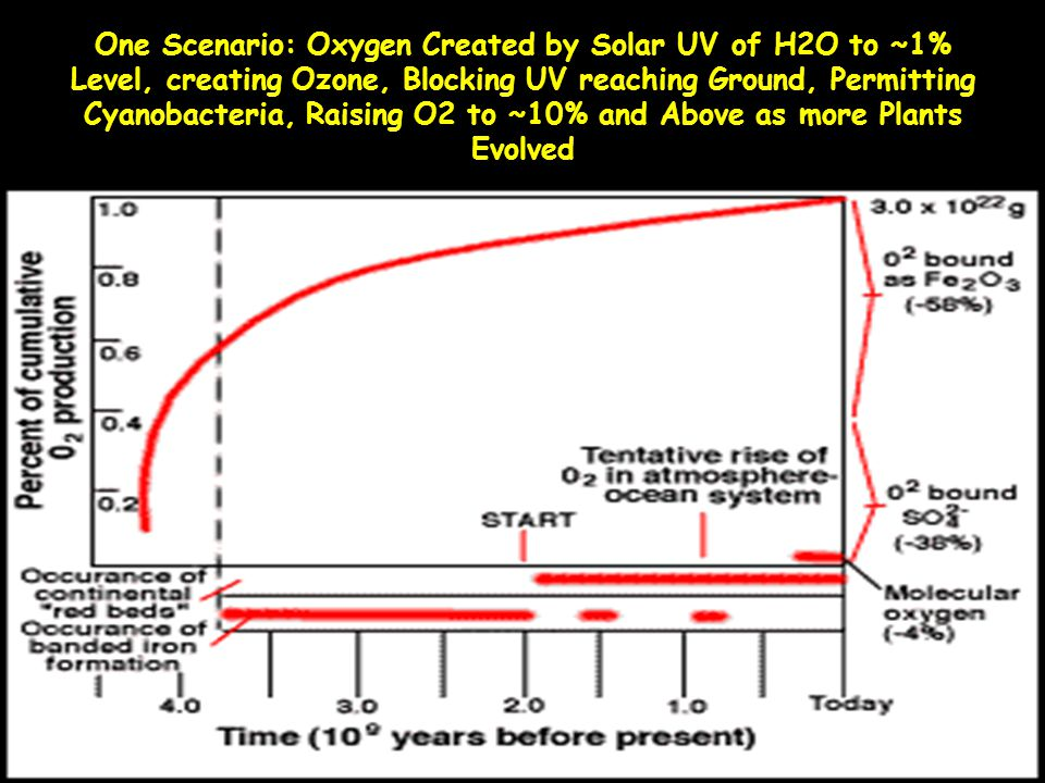 One Scenario: Oxygen Created by Solar UV of H2O to ~1% Level, creating Ozone, Blocking UV reaching Ground, Permitting Cyanobacteria, Raising O2 to ~10% and Above as more Plants Evolved