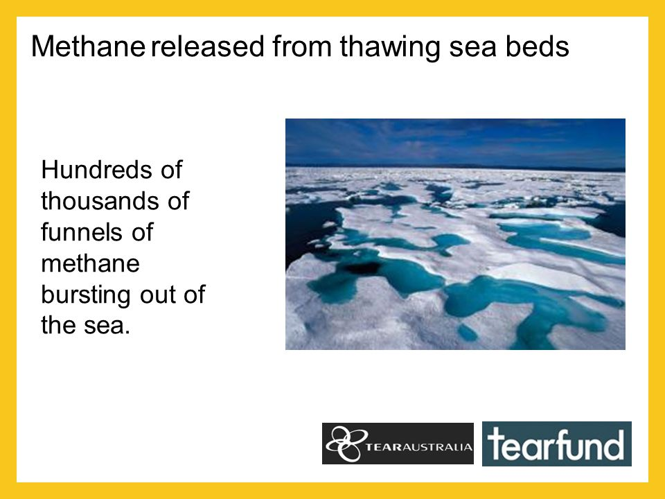 Methane released from thawing sea beds Hundreds of thousands of funnels of methane bursting out of the sea.