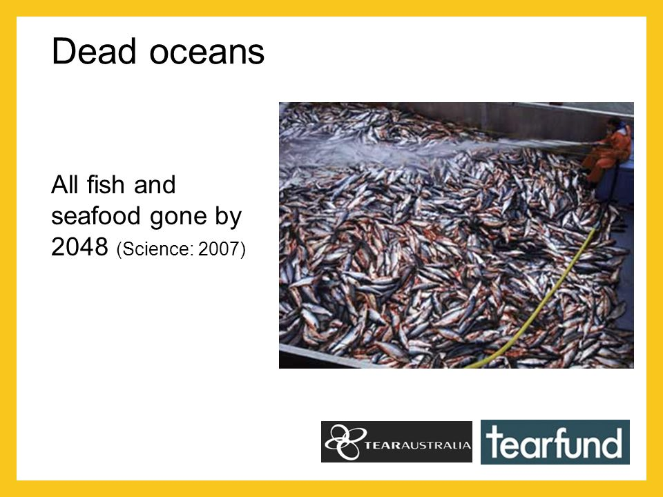 Dead oceans All fish and seafood gone by 2048 (Science: 2007)