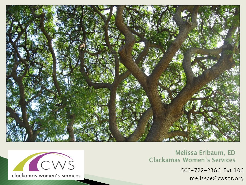 503-722-2366 Ext 106 melissae@cwsor.org Melissa Erlbaum, ED Clackamas Women's Services