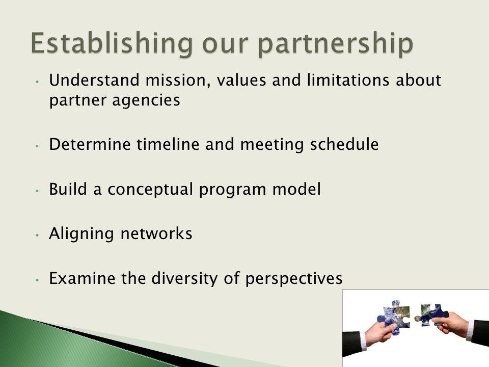 Understand mission, values and limitations about partner agencies Determine timeline and meeting schedule Build a conceptual program model Aligning networks Examine the diversity of perspectives
