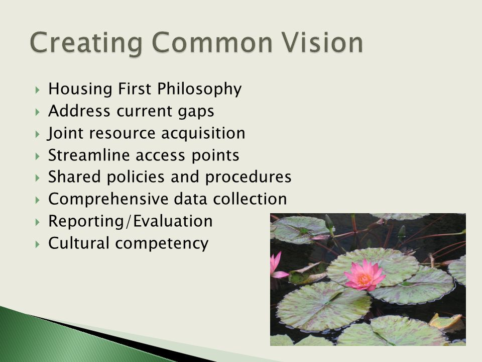  Housing First Philosophy  Address current gaps  Joint resource acquisition  Streamline access points  Shared policies and procedures  Comprehensive data collection  Reporting/Evaluation  Cultural competency
