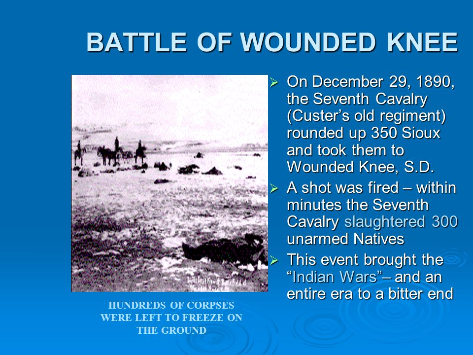 BATTLE OF WOUNDED KNEE BATTLE OF WOUNDED KNEE  On December 29, 1890, the Seventh Cavalry (Custer's old regiment) rounded up 350 Sioux and took them to Wounded Knee, S.D.