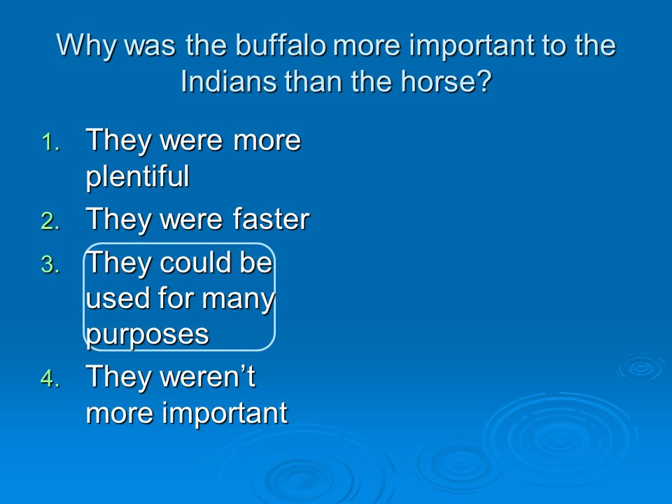 Why was the buffalo more important to the Indians than the horse.