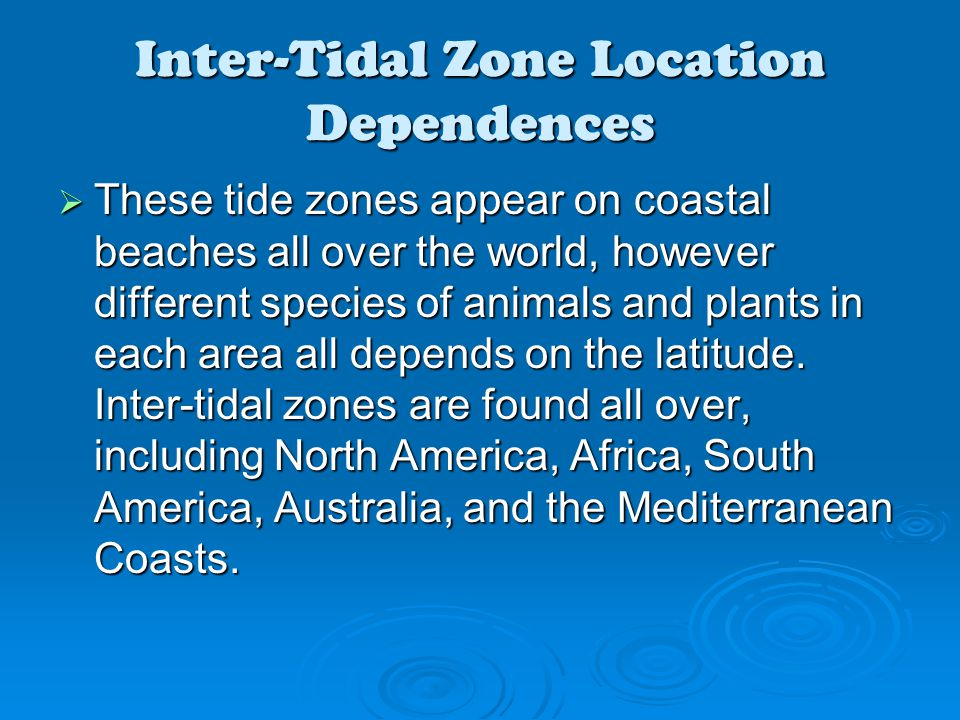 Inter-Tidal Zone Location Dependences  These tide zones appear on coastal beaches all over the world, however different species of animals and plants in each area all depends on the latitude.