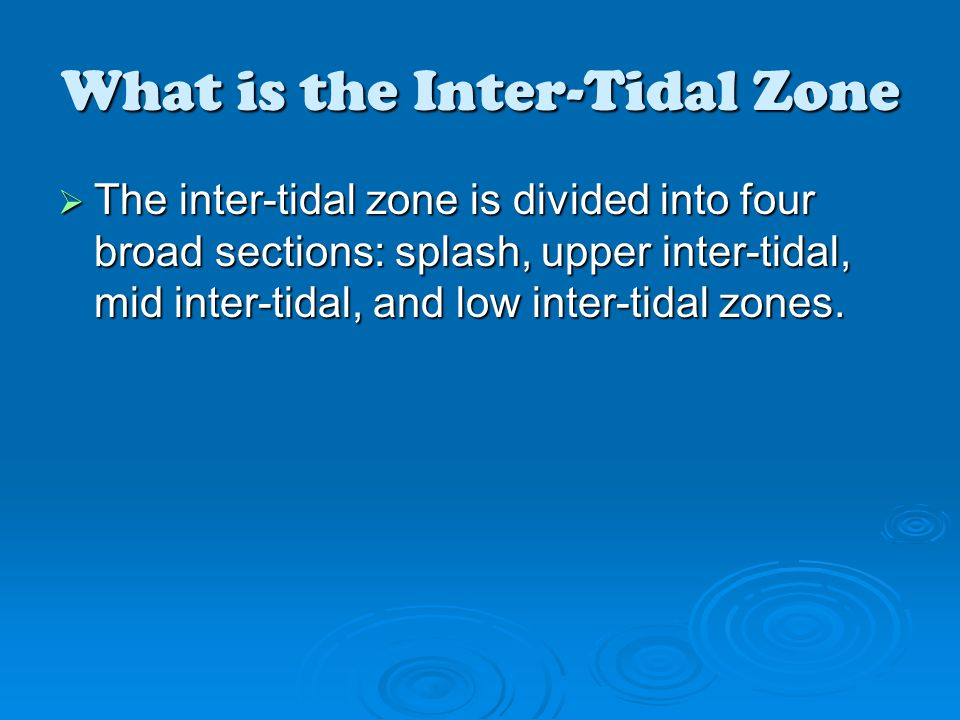 What is the Inter-Tidal Zone  The inter-tidal zone is divided into four broad sections: splash, upper inter-tidal, mid inter-tidal, and low inter-tidal zones.