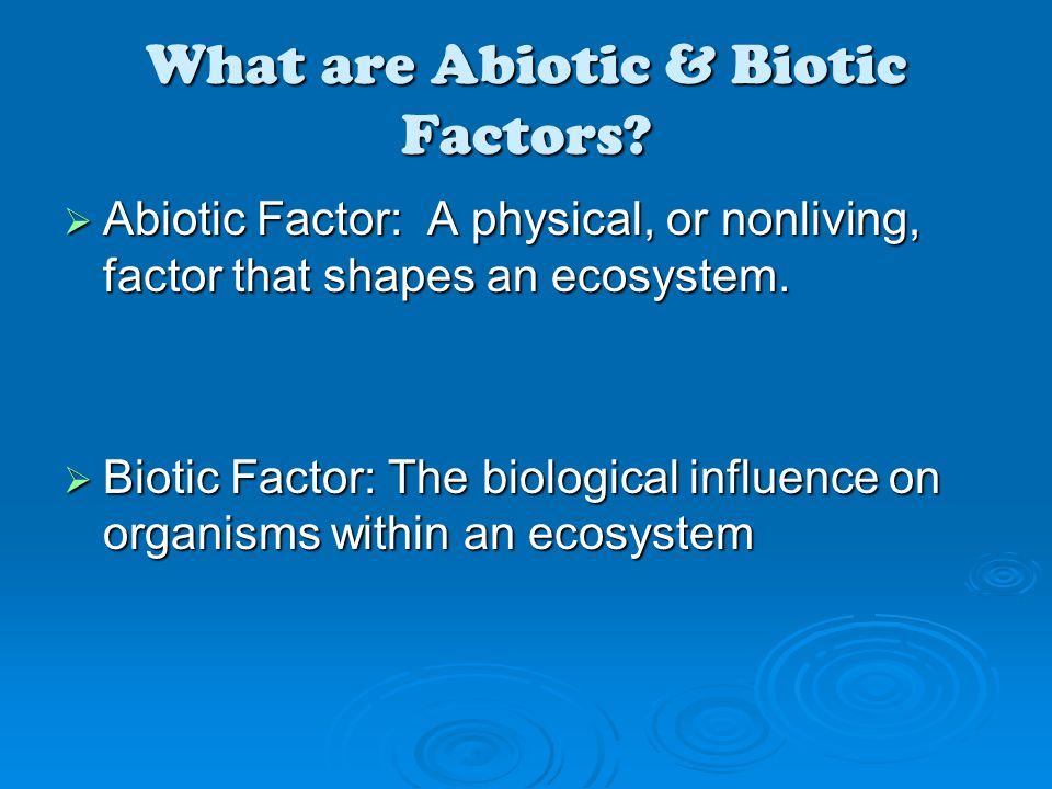 What are Abiotic & Biotic Factors?  Abiotic Factor: A physical, or nonliving, factor that shapes an ecosystem.  Biotic Factor: The biological influe