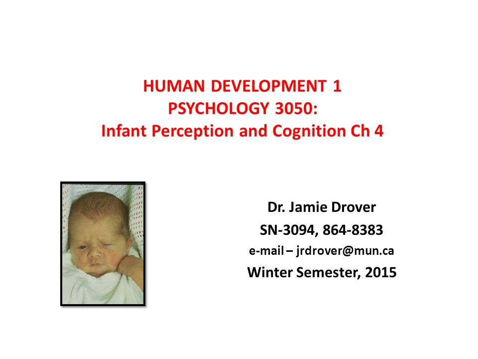 HUMAN DEVELOPMENT 1 PSYCHOLOGY 3050: Infant Perception and Cognition Ch 4 Dr. Jamie Drover SN-3094, 864-8383 e-mail – jrdrover@mun.ca Winter Semester,