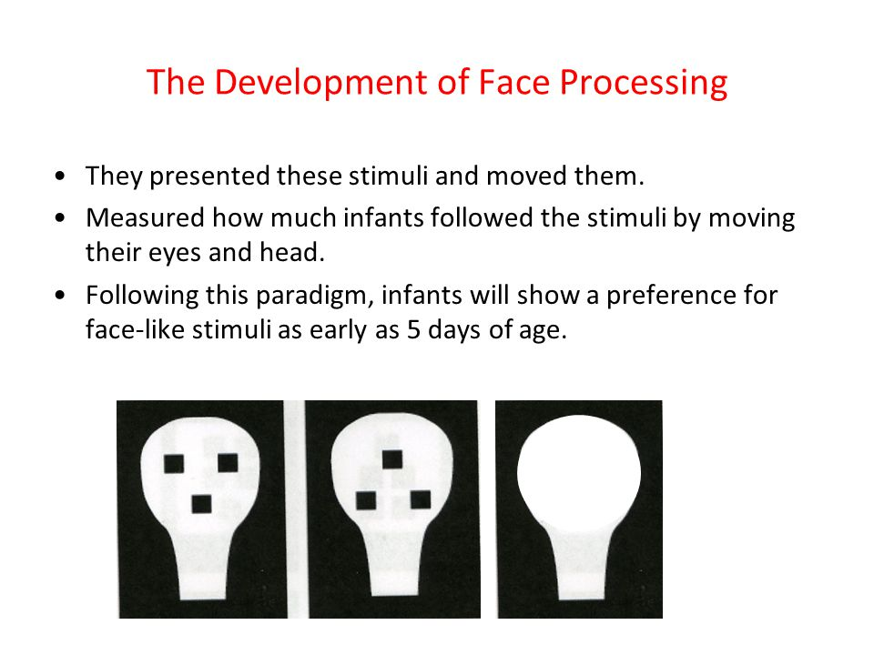The Development of Face Processing They presented these stimuli and moved them. Measured how much infants followed the stimuli by moving their eyes an