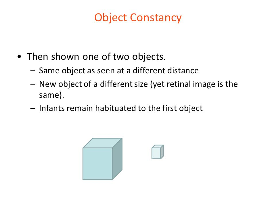 Object Constancy Then shown one of two objects. –Same object as seen at a different distance –New object of a different size (yet retinal image is the